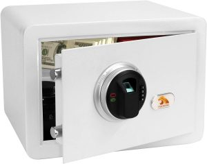 TIGERKING Security Safe Box